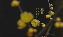 <b>立春有什么象征,立春不宜做什么</b>
