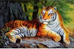 2022年属虎的几月出生最好,22年出生属虎人一生运势如何