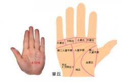 手掌纹路图解,每种线