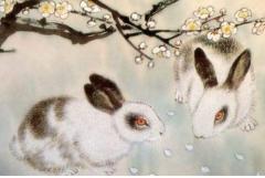 75年属兔女出生最佳月份,二月六月八月