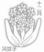 生日花语 - 寒情 - 寒情博客