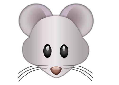 属鼠2019年运势及运程 2019年属鼠人的全年运势